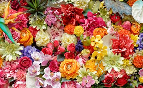 【母の日に贈る花の選び方】おすすめの花はこれ