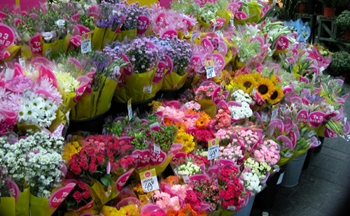 母の日に贈る花の選び方