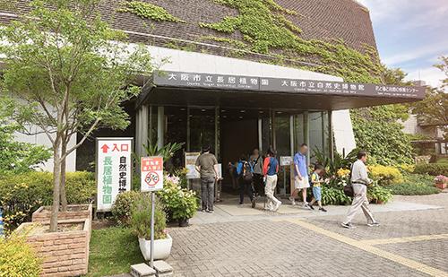 大阪市立自然史博物館基本情報